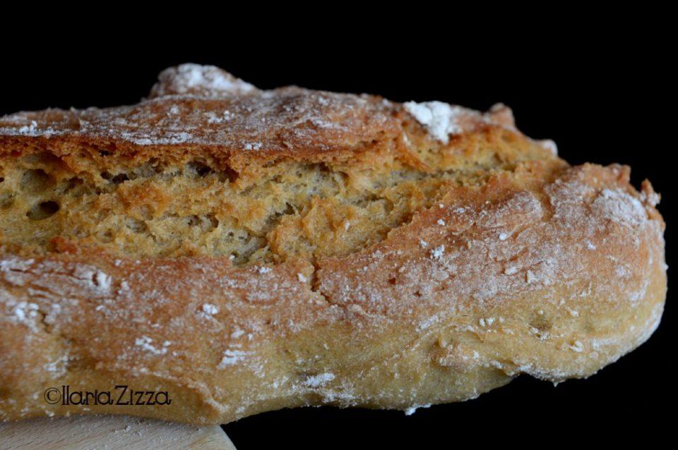 Pane veloce quick quick bread